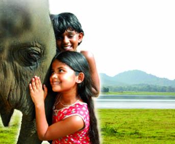 Imagen de Bindu