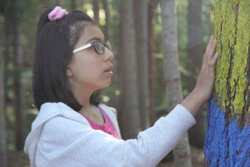 Imagen de La chica del bosque