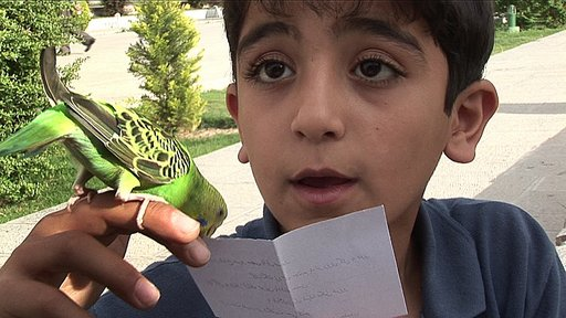 Imagen de El pájaro que adivina la suerte