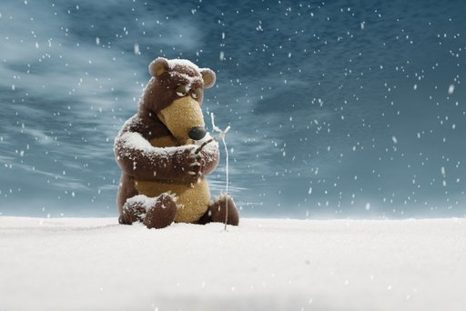Imagen de Ahí viene el oso